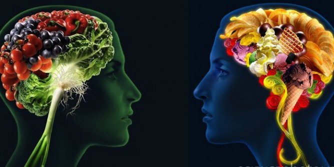 Top 5 Brain Foods for Online Casino Players
